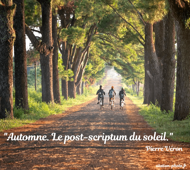 citation Automne. Le post-scriptum du soleil